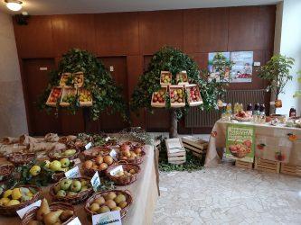Razstava sadja v KD Črnomelj